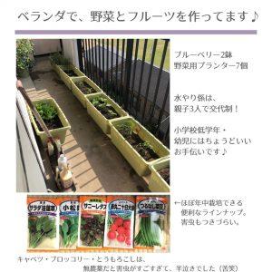 ベランダ菜園で通年作れる野菜について
