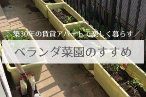 ベランダ菜園は子供にとってはプチレジャー!楽しく美味しく節約生活を送る方法