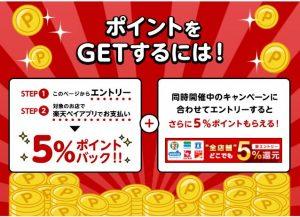 「楽天Pay」11月の5%ポイントバックキャンペーン