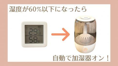 Switch Botの温湿度計と加湿器を連携させて乾燥しない部屋づくり【レビュー&設定方法】